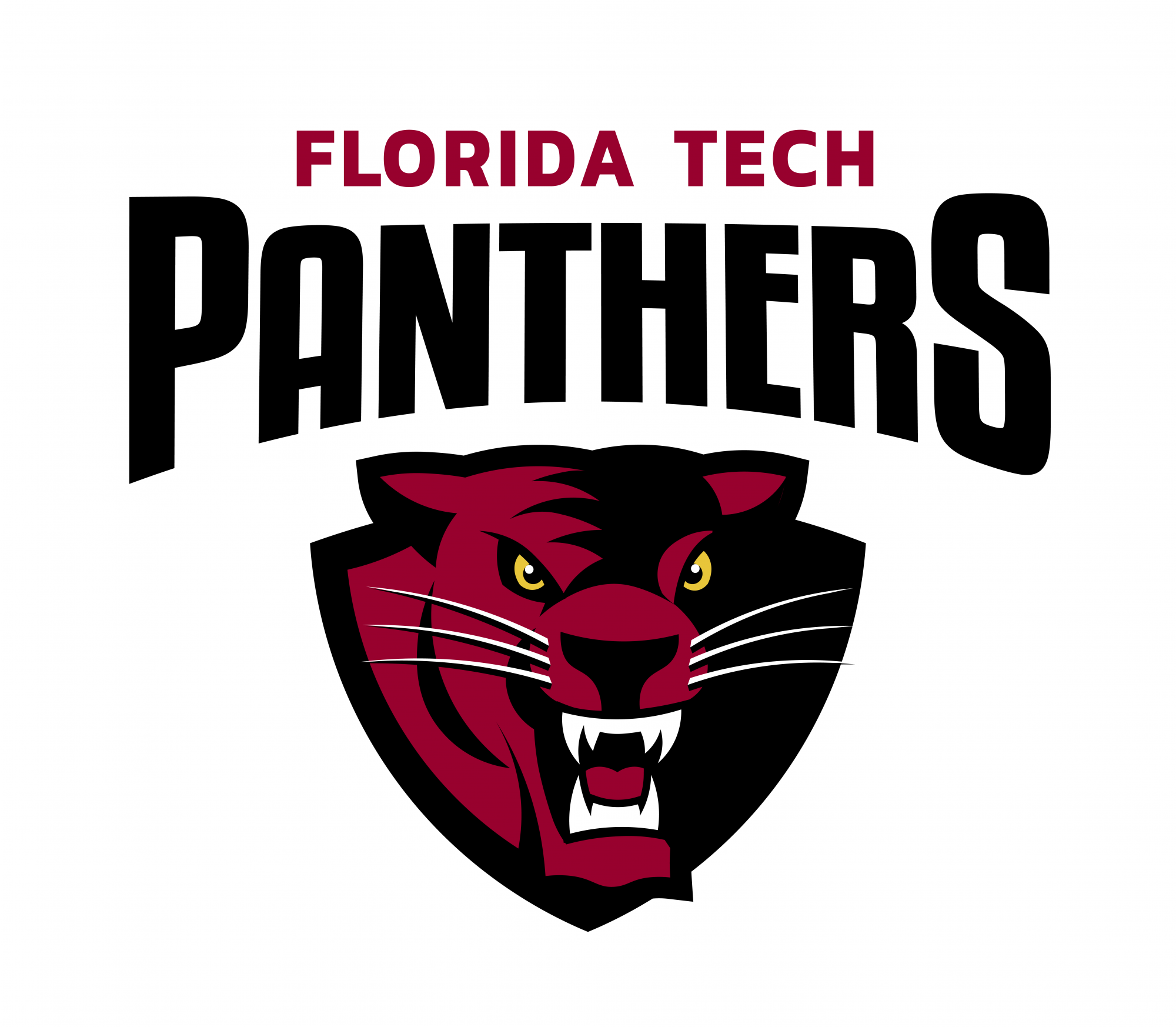 Florida Tech Panthers Brands Of The World Download Vector Logos And Logotypes
