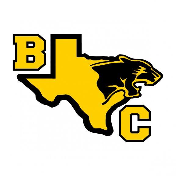 Logo of Black Cats