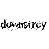 Logo of Downstroy