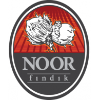 Logo of Noor Findik