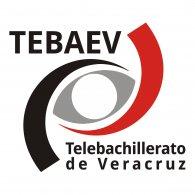 Logo of Tebaev