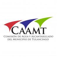 Logo of CAAMT Tulancingo