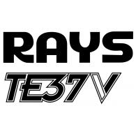 Logo of RAYS