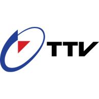 Logo of Taiwan Television 1990