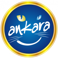 Logo of Ankara