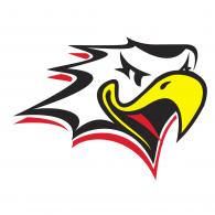 Logo of Vaasan Sport