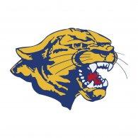 Logo of Edinburg North Cougars