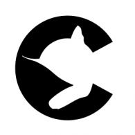 Logo of Chessie System