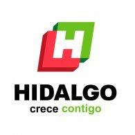 Logo of Gobierno de Hidalgo V Omar Fayad