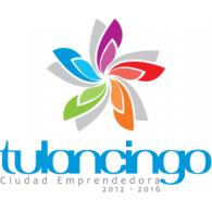 Logo of Tulancingo 2012-2016