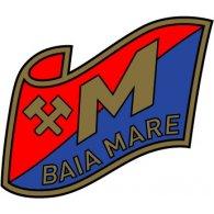 Logo of Minerul Baia Mare