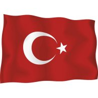Logo of Illustrated Turkish Flag
