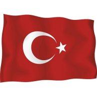 Logo of Illustrated Turkish Flag