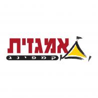 Logo of Amgazit