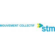 Logo of STM