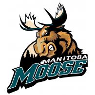Logo of Manitoba Moose