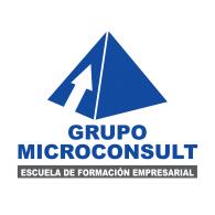 Logo of Microconsult Peru