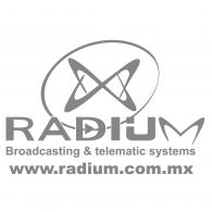 Logo of Radium Telematica