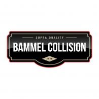 Logo of Bammel
