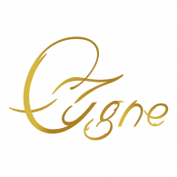 Logo of Cigne C.A