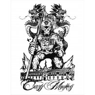 Logo of crazy monkey mexico