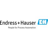 Logo of Endress+Hauser