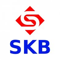 Logo of SKB