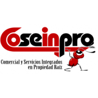 Logo of COSEINPRO