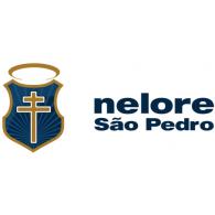 Logo of Nelore São Pedro