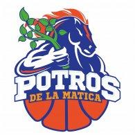Logo of Potros de la Matica