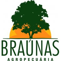 Logo of BRAUNAS AGROPECUARIA