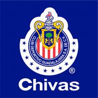 Logo of Chivas Rayadas (12 ligas)