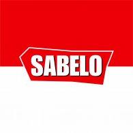 Logo of Sabelo Noticias