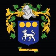 Logo of Flynn