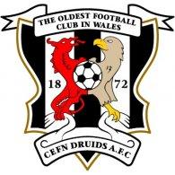 Logo of AFC Cefn Druids