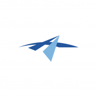 Logo of Newbridge Capital Partners