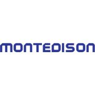Logo of Montedison