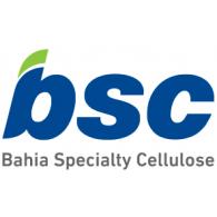 Logo of BSC