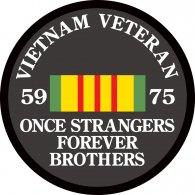 Logo of Vietnam Veteran