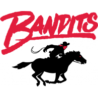 Logo of Tampa Bay Bandits