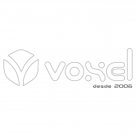 Logo of Voxel C&T