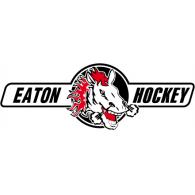 Logo of HC Eaton Pardubice