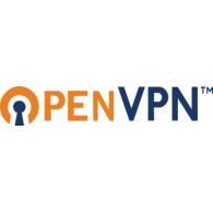 Resultado de imagem para openvpn logo