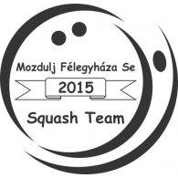 Logo of Modulj Felegyhaza Squash Team