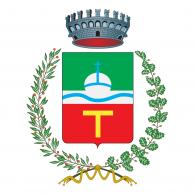 Logo of Comune di Castello Tesino