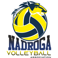 Logo of Nadroga Volleyball Association