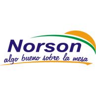 Logo of Norson