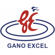 Logo of Gano Excel