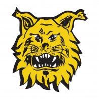 Logo of Ilves Tampere