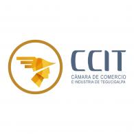 Logo of Cámara de Comercio e Industria de Tegucigalpa